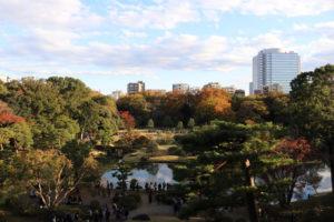 藤代峠からの眺望の写真