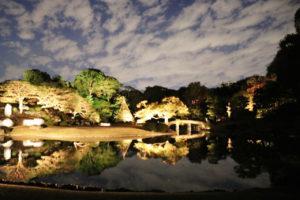 大泉水と田鶴橋のライトアップの写真
