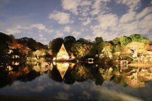大泉水のライトアップの写真