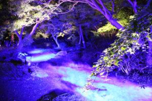 水香江の写真