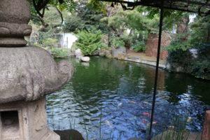 愛宕神社の池